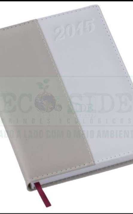 Agenda reciclada Diaria Modelo Executivo - Foto: 64