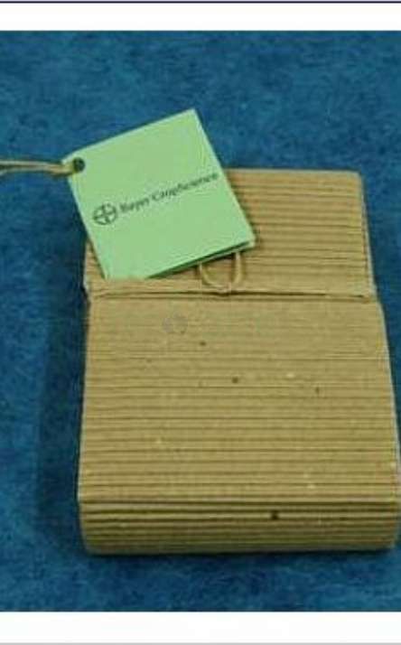 embalagem carteira para Lapis de cor reciclado de galhos de poda de arvore