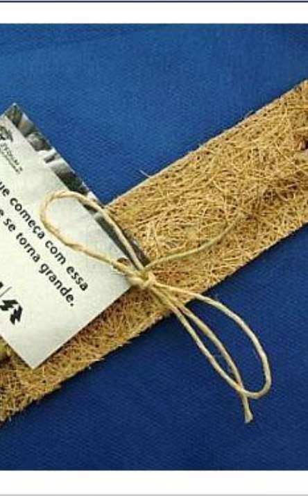 caneta de bambu com estojo de fibra de coco